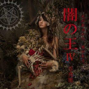 闇の王Ⅳ FLOOR-KICHIKU