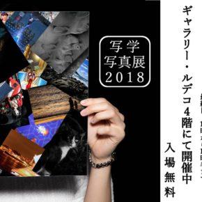 写真の学校 写真展 2018