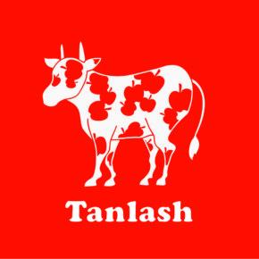 Tanlash vol.2