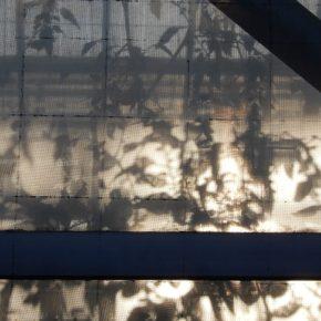 明治大学 写真技術研究部 2018年度 五月展