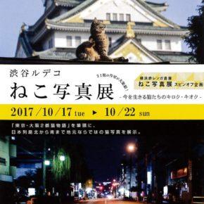 渋谷ルデコ ねこ写真展 -今を生きる猫たちのキロク・キオク-